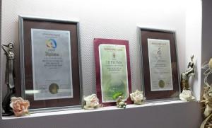 iwa-nagrade-5